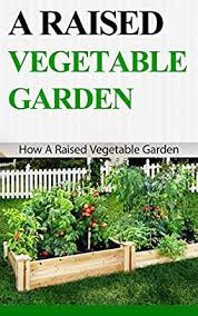 a raised vegetable garden how a raised