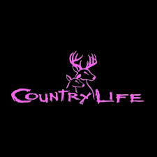 11 Country Life Deer Buck Doe Decal 06 Country Life Car Decals Little Blue Trucks