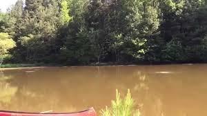 diy big max pond aeration thomas