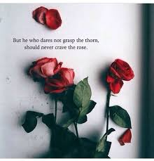 but he who does not grasp the thorn should not crave the rose