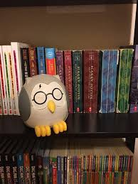 Feather The Owl Diffuser Harry Potter Inspired Glasses Vinyl Etsy