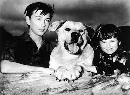 Old Yeller Portrait - Tommy Kirk, Spike and Kevin Corcoran - Old ...