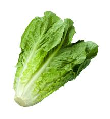 lettuce leaves more nutritious than