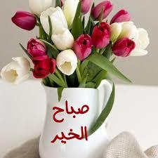 ورد صباح الخير اجمل ورود وصباح الخير كيف
