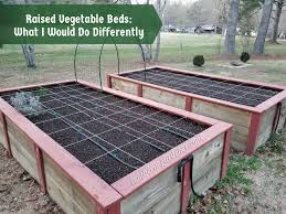 raised vegetable gardens what i would
