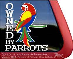 Macaw Parrot Decals Stickers Nickerstickers
