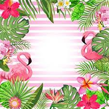amazon leowefowa 5x5ft flamingo