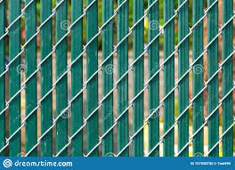 Chain Link Fence With Privacy Slats Stock Photo Image Of Green Outdoors 157658750
