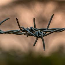 Barbed Wire Fencing In Crowley And Fort Worth Tx