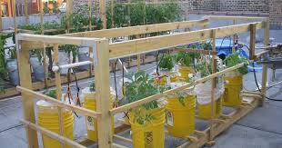 two bucket sub irrigated planter