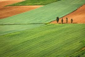 Господарським судом Луганської області відкрито провадження за позовною заявою прокуратури на захист інтересів держави у сфері земельних відносин на суму понад 2 мільйони гривень