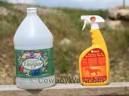 how to make homemade horse fly spray