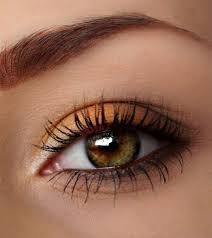 autumn eye makeup ideas 2016 shue