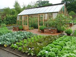 practical vegetable garden designs 23