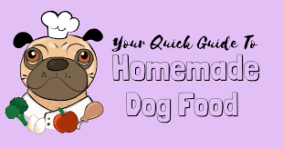 homemade dog food it s not as