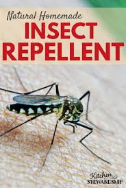 natural homemade insect repellent