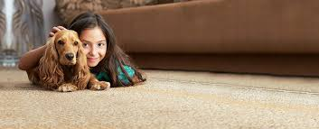 best carpet cleaning in arizona sns