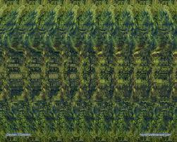 fauna flora wallpaper 1280 x 1024 new