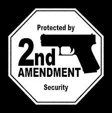 Protected By Gun Decal Security Car Window Sticker Amendment House