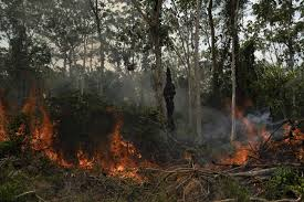 Atiende 'de lejos' Bolsonaro cumbre por la Amazonia
