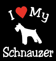 I Love My Dog Schnauzer Pet Car Decals Stickers Gift Appealing Signs