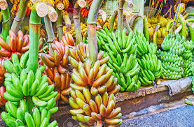 The Green And Red Bunches Of Bananas At The Stall Of Chinatown ...