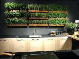 inside vegetable garden ideas
