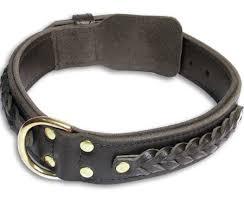 25 inch dog collar