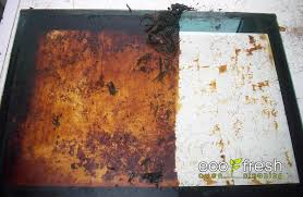professionally clean your oven door