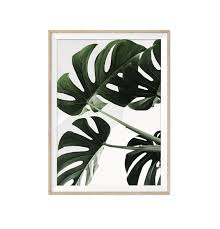 monstera leaf print monstera wall art