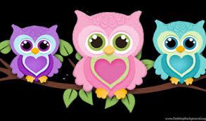 25459 cute owl wallpaper hd