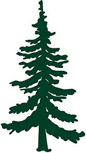 Amazon Com Hbarsci Pine Tree Vinyl Decal 5 Inches For Cars Trucks Windows Laptops Tablets Outdoor Grade 2 5mil Thick Vinyl Dark Green Automotive