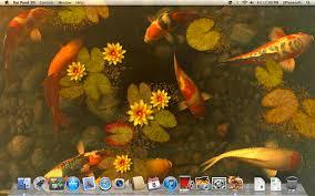 koi pond 3d dmg ed for mac free
