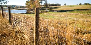 Black 12 5 Ga Solidlock Fixed Knot Fence 8 X 330