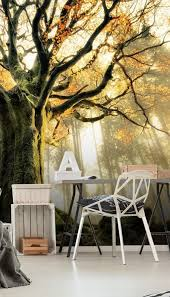 tree giant wall mural from wallsauce