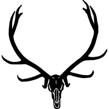 Amazon Com Black Vinyl Decal Elk Skull Hunt Antlers Horns Bone Hunting Country Sticker Fun Die Cut Decal Bumper Sticker For Windows Cars Trucks Laptops Etc Automotive