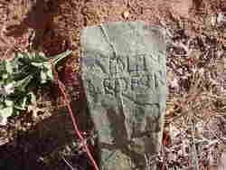 Demarius Adeline Rogers Ledford (1830-1925) - Find A Grave Memorial