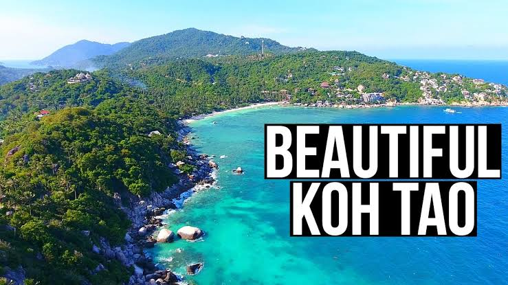 Koh Tao Thailand Places And Adventure