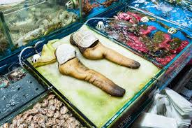 Travel To China - Geoduck Clams On ...