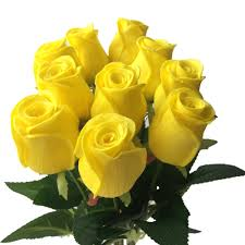 Real Touch Roses Red White Yellow Purple Pu Rose Natural Looking
