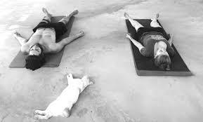 yoga nidra prana masala