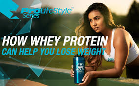 whey protein help to lose weight