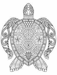 Pin Van Suzanne Alberts Op Tekenen Kleurplaten Mandala