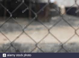 Blur Grey Steel Fence Background Beautiful Line With Iron Of Thorn Texture Metal Net No People And Nice Design Stock Photo Alamy