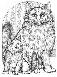 Coloring For Adults Kleuren Voor Volwassenen Katten Met
