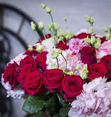 باقات الورد رائعة For Android Apk Download
