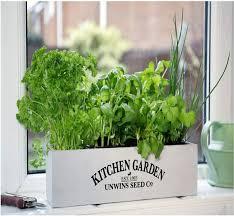 sprouted gourmet organic herb garden