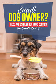 13 homemade dog food recipes for small