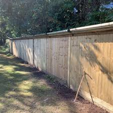 Cat Fencing By Katzecure Reviews Facebook
