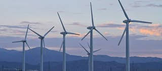 Palm Springs Windmill Tours Is The Only Behind The Fence Historical Eco Bus Tour Usa Activities Lonely Planet